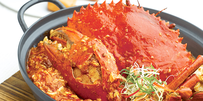 Chilli Crab from JUMBO Seafood (Jewel Changi Airport) in Changi, Singapore