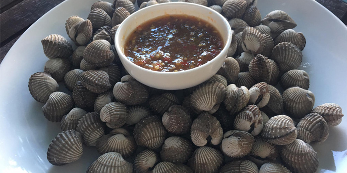 Parboiled-Cockle from Fish Bar & Restaurant in Rawai, Phuket, Thailand