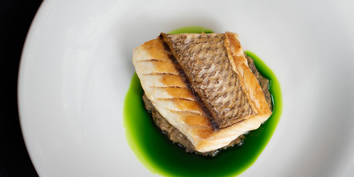 New Zealand Snapper from Artemis in Raffles Place, Singapore