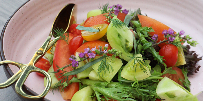 Salad from Clove at Swissotel The Stamford in City Hall, Singapore