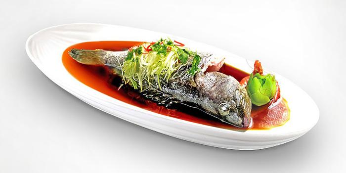 Grouper from Tian Wei Seafood in Yio Chu Kang, Singapore