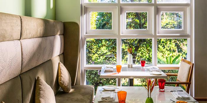 Window Seat from The Garden at Sofitel Singapore Sentosa Resort & Spa in Sentosa, Singapore