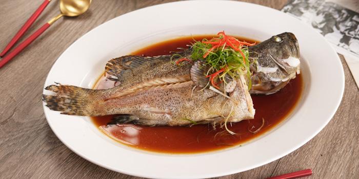 Steam Fish at Taipan Kitchen & Dining, Gajah Mada