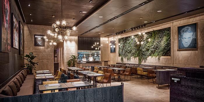 Interior, Monkey Cafe, Wan Chai, Hong Kong