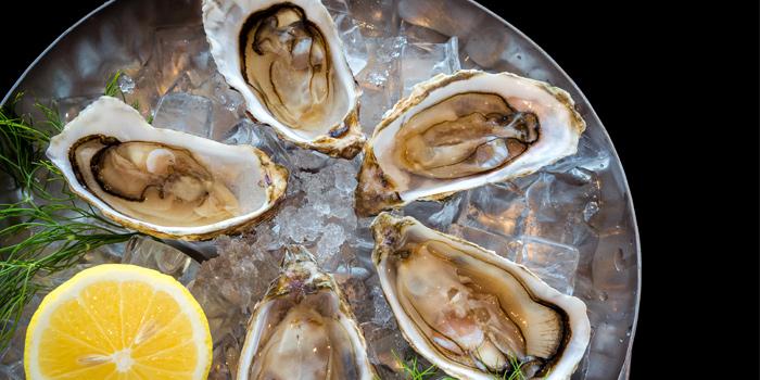 Oyster from Oceanfront Restaurant in Kok-Tanode Road Karon Muang Phuket, Thailand