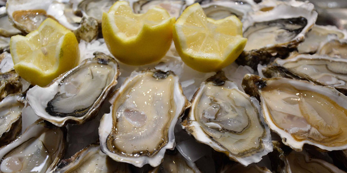 Oysters from Bacchus & Co at 150 Soi Sukhumvit 16 Khlong Toei Bangkok