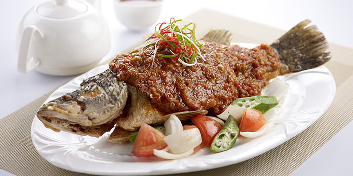 Crispy Sea Bass with Lemak Chinchalok Chilli from Oceanspoon Dining (Sembawang Country Club) in Sembawang, Singapore