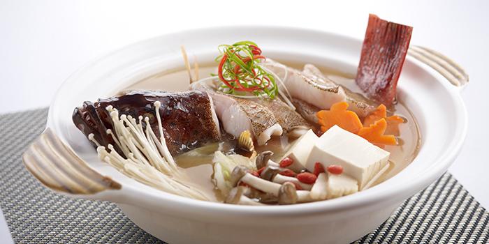 Red Garoupa Miso Soup from Oceanspoon Dining (Sembawang Country Club) in Sembawang, Singapore