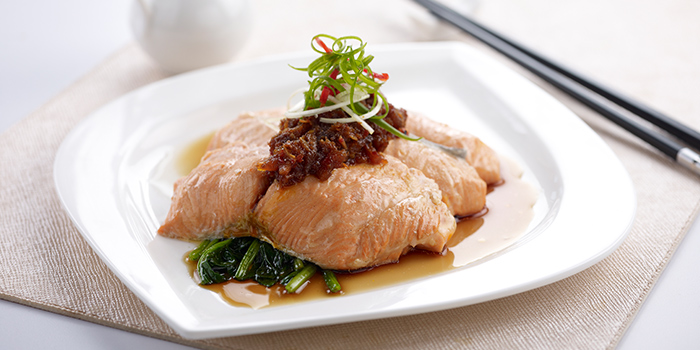 Steamed Salmon Fillet with XO Sauce from Oceanspoon Dining (Sembawang Country Club) in Sembawang, Singapore