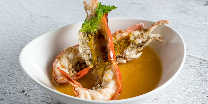 Steamed Big Head Prawn with Egg White in Wined Sauce from San Yuan Ge at IMM in Jurong, Singapore