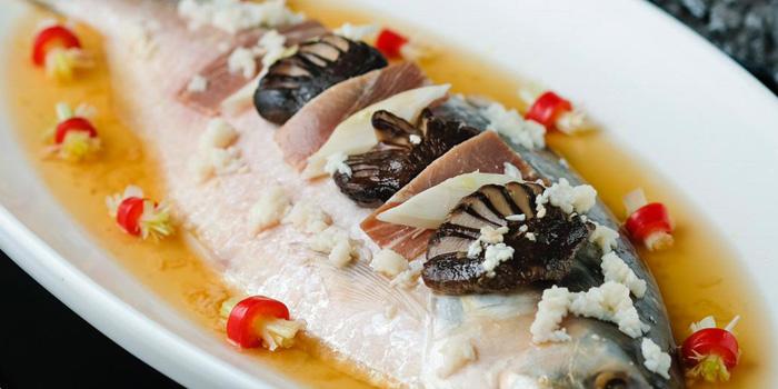 Sour and Spicy Steam Fish, Shanghai Yu Yuan, Causeway Bay, Hong Kong