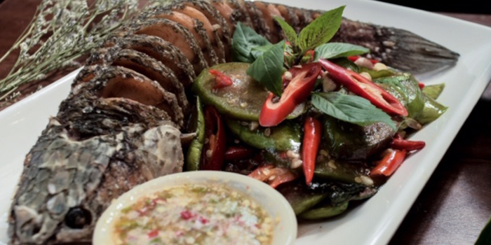 Special Dishes from Kiew kai ka at 68/2 Asok Montri Rd Khlong Toei, Khet Watthana Bangkok