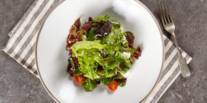 Garden Salad from BottomsUp Eastville at CentralFestival Eastville Praditmanutham Ladprao Bangkok