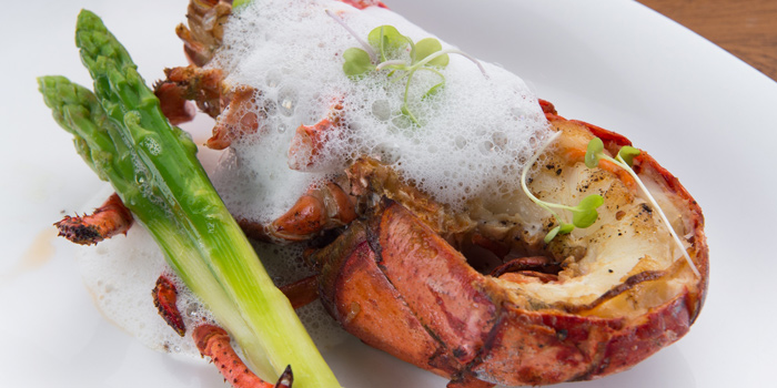 Grilled Lobster from Up & Above at The Okura Prestige Bangkok Hotel 57 Witthayu Rd, Lumphini, Pathum Wan Bangkok