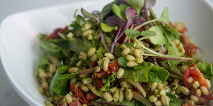 Barley Salad, Amalfitana Artisan Pizza Bar, Repulse Bay, Hong Kong