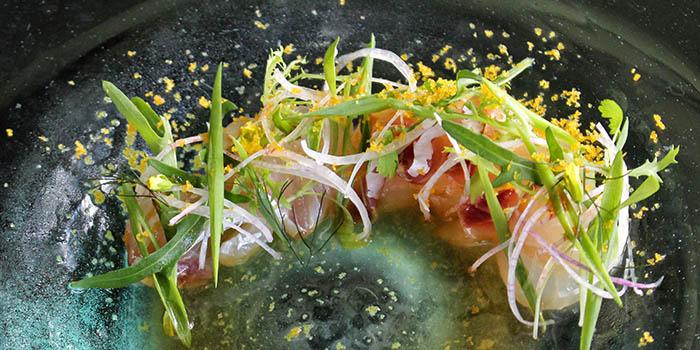 Sashimi Red Snapper from Indigo Canggu Restaurant, Bali