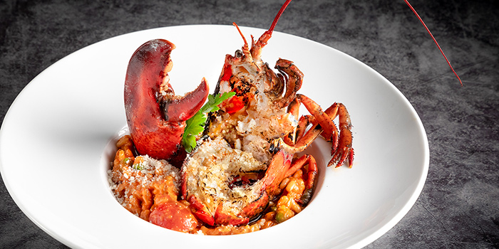Lobster Risotto, Cull