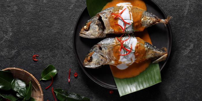 Main Dishes from Buranee Bar & Bistro at 23 Phra Athit Rd Chanasongkram, Phranakhon Bangkok