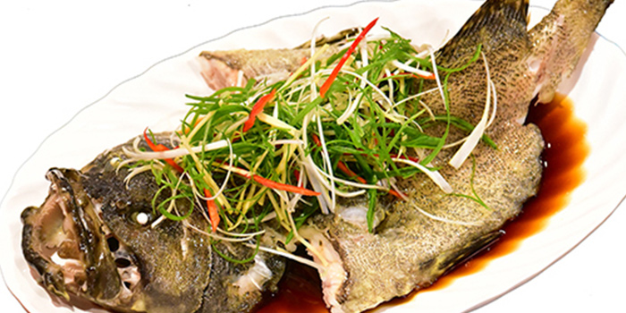 Steamed Live Pearl Grouper from Big and Small Restaurant in Tanjong Pagar, Singapore