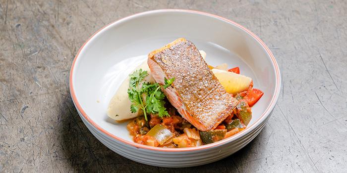 Salmon with Salsa Fresca from Thunderbird Bistro in Robertson Quay, Singapore