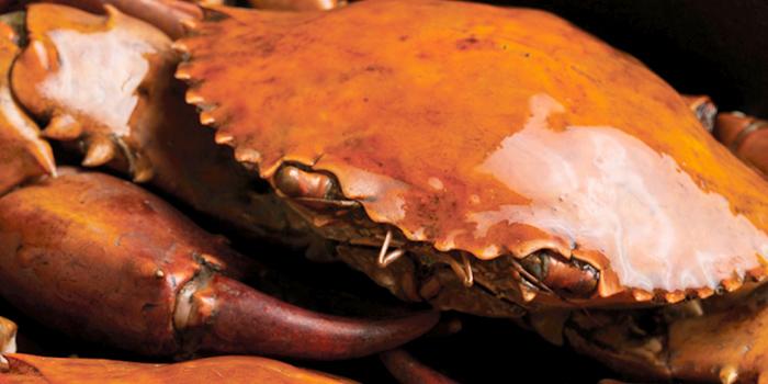 Crab Feast from Szechuan Court in Fairmont Singapore, Singapore