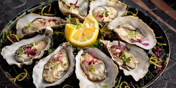 Rock Oysters, Estiatorio Keia, Central, Hong Kong