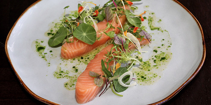 Food from Indigo Canggu Restaurant, Bali