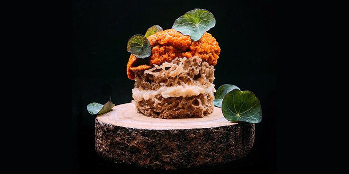 Hokkaido Sea Urchin with Coffee Sponge, PMQ Taste Kitchen, Central, Hong Kong