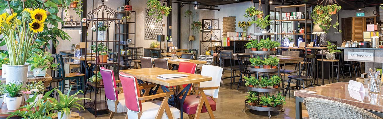 Interior of Knots Cafe and Living