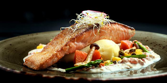 Pan Seared Salmon from 5 Senses Bistro (Funan Mall) at Funan Mall in City Hall, Singapore