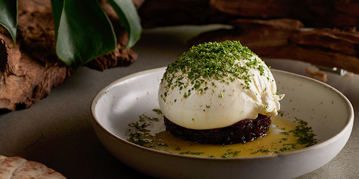 Burrata from Summerlong at The Quayside in Robertson Quay, Singapore