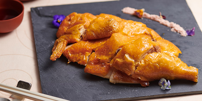 Salted Chicken, Dynasty Garden, Kowloon Bay, Hong Kong