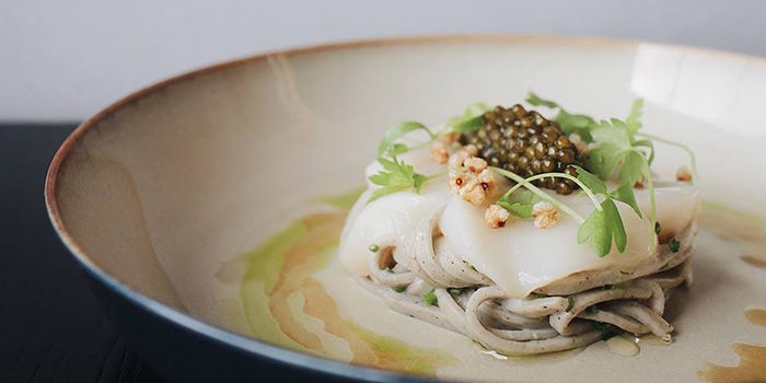 Scallop Crudo from SKAI Restaurant at Swissotel the Stamford in City Hall, Singapore