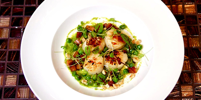 Seared Scallops with Hazelnut Crumbs & Petit Pois from Wonderland Savour (VivoCity) in Harbourfront, Singapore
