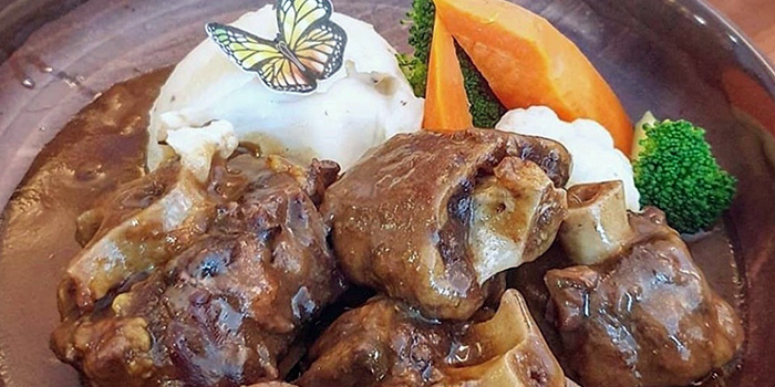 Braised Oxtail Stew in Truffle Oil from Dolphin