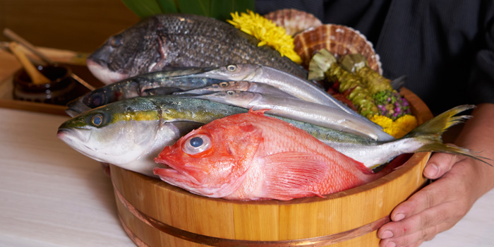 Fresh Fishes from Hon by Meruto @ Bnagna 30/89 , Bang Kaew Bang Plee, Bang Phli Samut Prakan