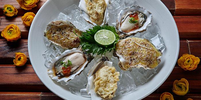 Oyster, Tokio Joe, Lan Kwai Fong, Hong Kong