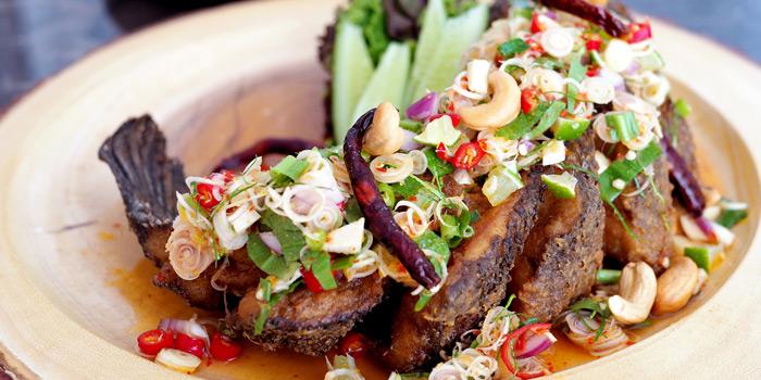 Appetizer Dishes  from Pitisuk Bar & Restaurant at17 Soi Moo Ban Seri Villa Yaek 2 Nong Bon, Khet Prawet Bangkok