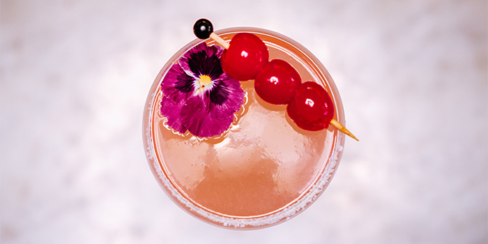Cocktails at LEÓN