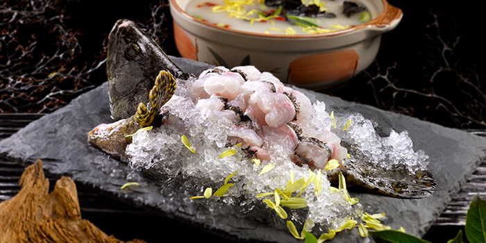 Poached Whole Garoupa from Crystal Jade Pavilion at Crowne Plaza Changi Airport in Changi, Singapore