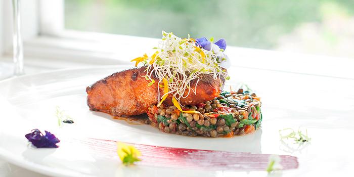 Salmon from The Garden at Sofitel Singapore Sentosa Resort & Spa in Sentosa, Singapore