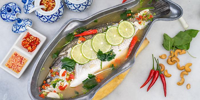 Steam Seabass with Lime Sauce from Thonglor Thai Cuisine (Ang Mo Kio) in Ang Mo Kio, Singapore