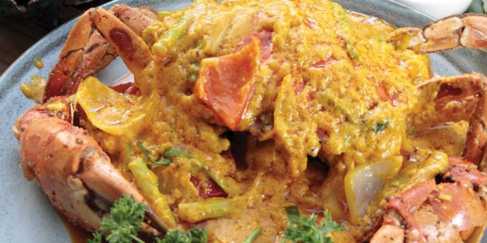 Curry Mud Crab, Thai Master, Tsim Sha Tsui, Hong Kong