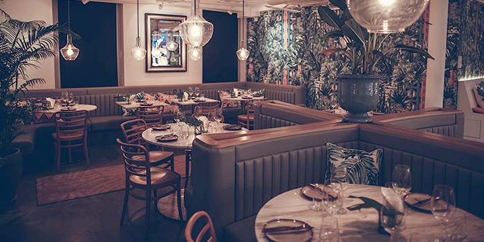 Don Ho Social Kitchen Bar Chope Restaurant Reservations