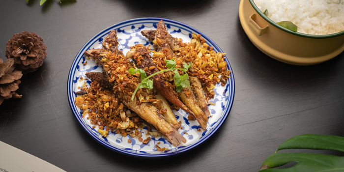 Fried Dishes from Plu at 3 Soi Sathon 3 Thung Maha Mek, Sathon Bangkok