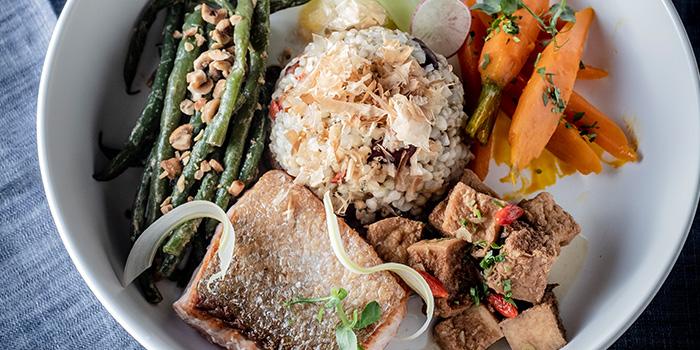 Pan Seared Salmon Grains Bowl from 51 Soho in Telok Ayer, Singapore