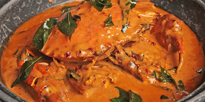 Curry Paste Crab from Happiness Seafood by Uncle Leong Signatures in Kallang, Singapore