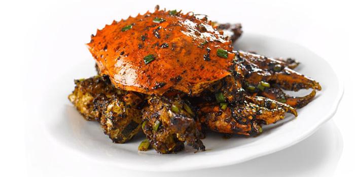 Pepper Crab from TungLok Seafood (Paya Lebar) at Paya Lebar Quarter in Paya Lebar, Singapore