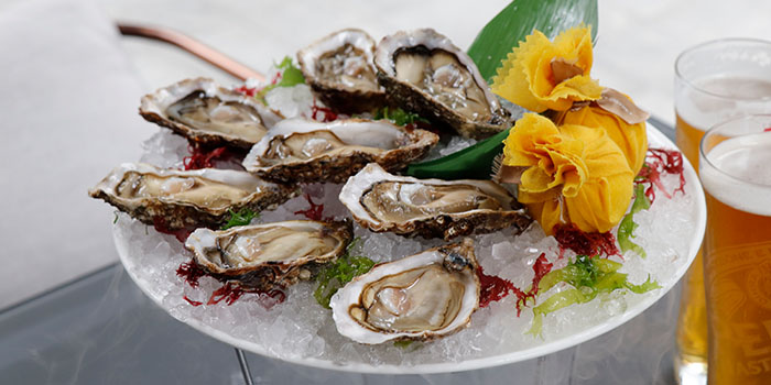 Oyster, Cotton Tree Terrace, Central, Hong Kong