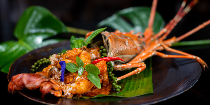 Lobster of Dee Plee in Layan, Phuket, Thailand